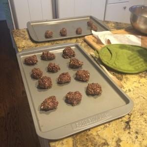 dark chocolate oatmeal balls
