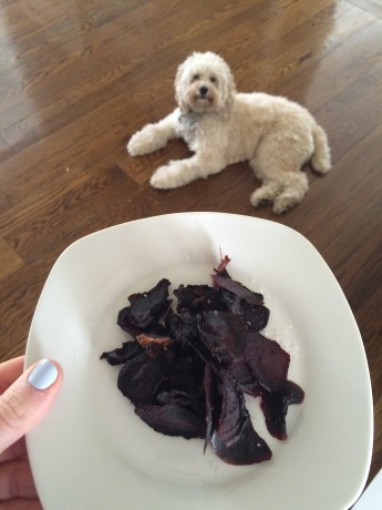 DRIED BEETS AND A REALLY CUTE DOG!